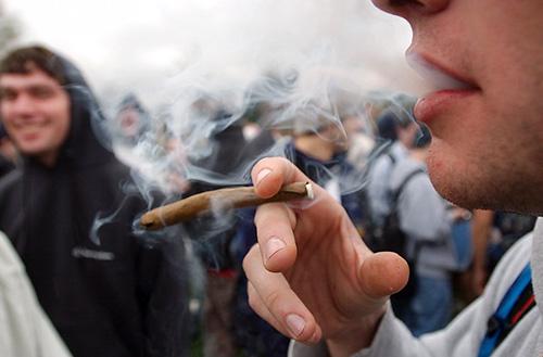 Stowarzyszenie Canabis House: Szukamy 10000 osób, które chcą przez 10 lat legalnie palić marihuanę w Polsce., haszysz.info