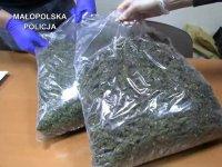 marihuana-3654