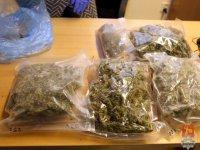Te narkotyki nie trafią na rynek, haszysz.info