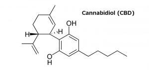 Syntetyczna marihuana jest 30 razy bardziej niebezpieczna, ale legalna, haszysz.info