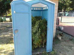 FW: porta potty photos