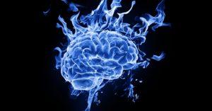 kanabis-mozg-struktury-badania-1