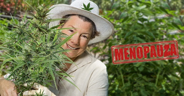 Kannabis i menopauza, haszysz.info