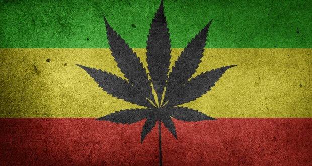 Legalize it!   Tak, i Co Potem?, haszysz.info