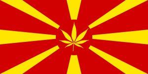 Macedoński olej cannabisowy, haszysz.info