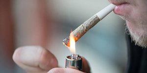 Czy cannabis prowadzi do psychoz?, haszysz.info
