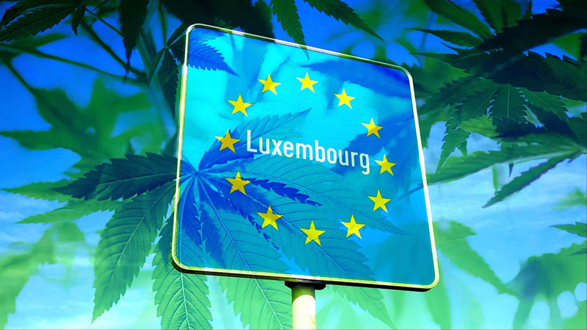 Pierwsza Legalizacja Marihuany w Europie – Luksemburg, haszysz.info